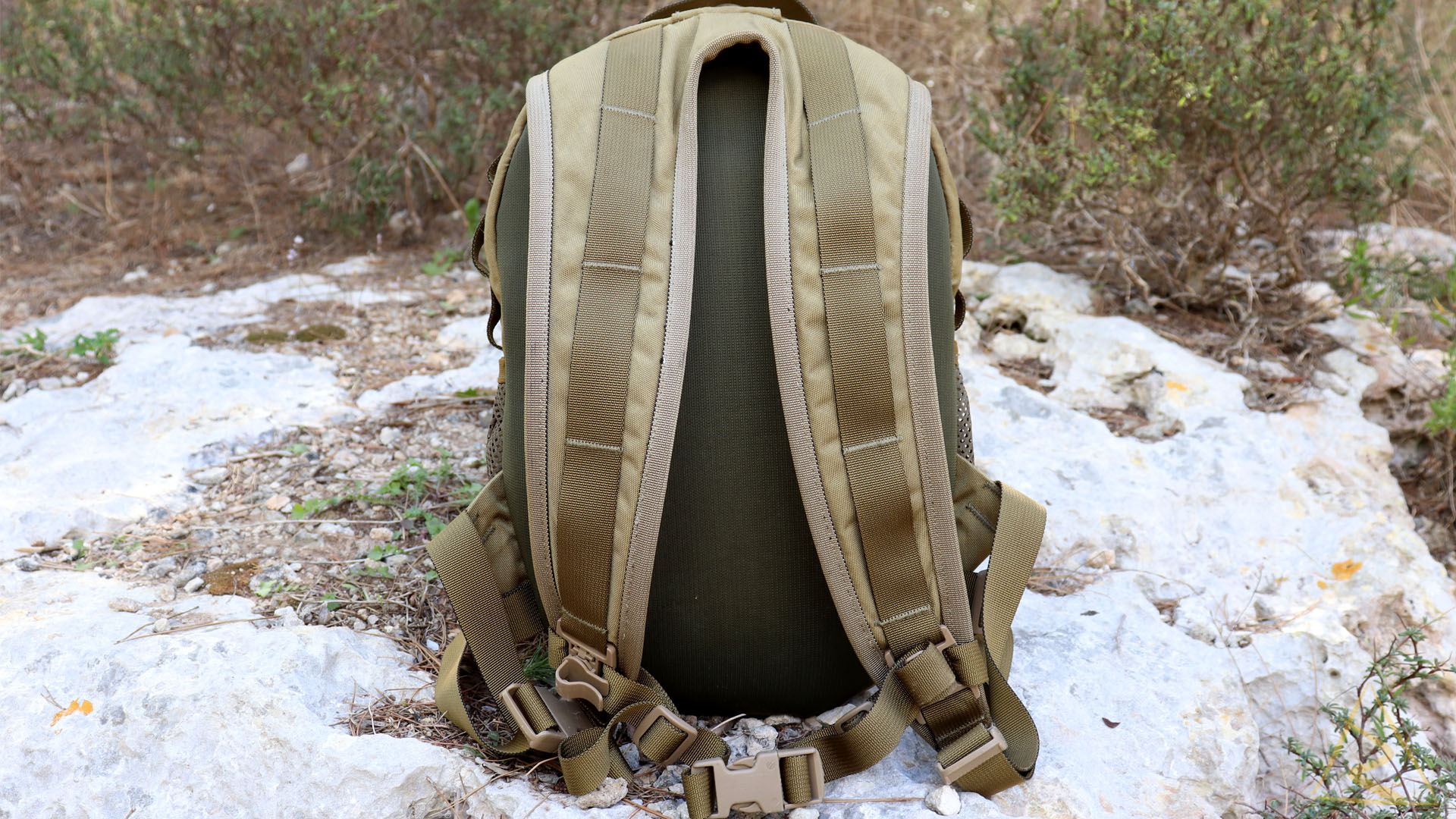 Wisport Sparrow Egg Backpack Straps